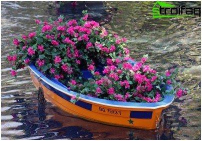 цветна леха в лодка