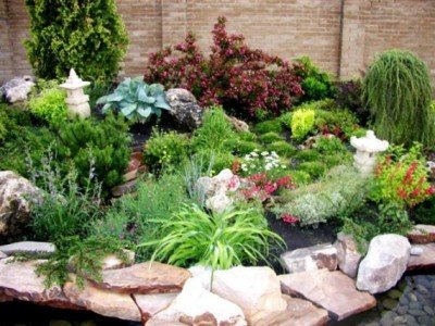 Rockery in the garden does not require constant care