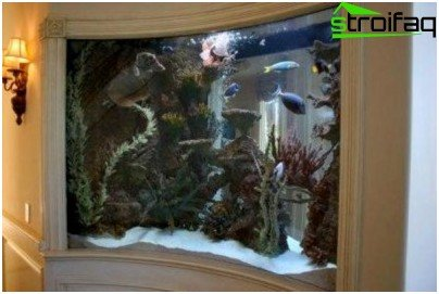 Aquarium in a drywall niche