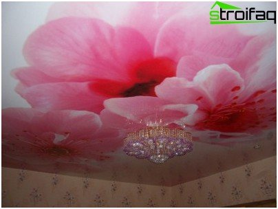 Fabric stretch ceiling - an example of photo printing
