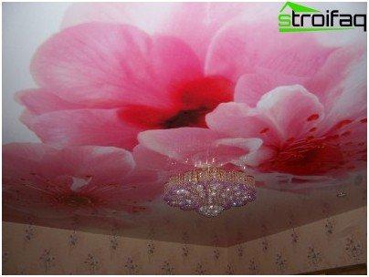 Stropni rastezljivi strop - primjer ispisa fotografija