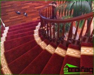 Carpet Guidelines