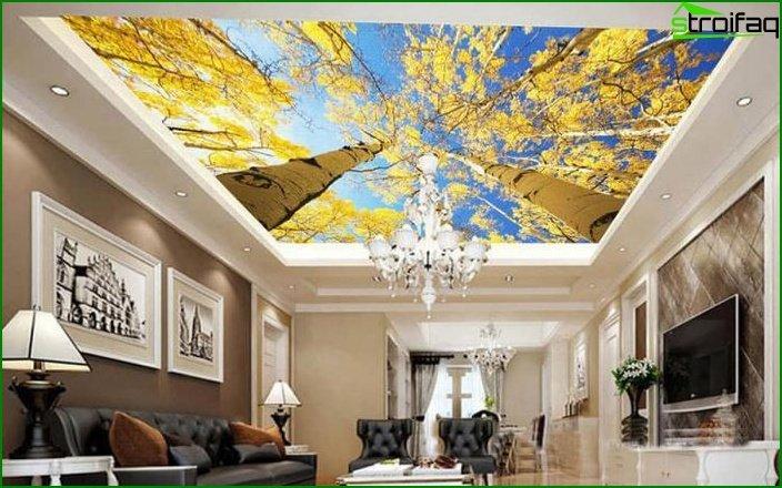سقف الصورة في غرفة المعيشة 3