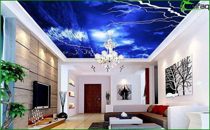 سقف الصورة في غرفة المعيشة 8