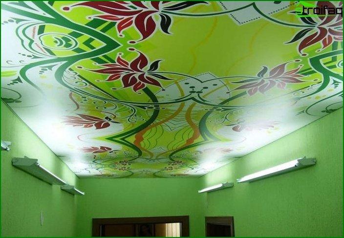 سقف الصورة في غرفة المعيشة 12