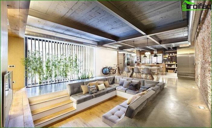 Plantas de interior en el interior 9